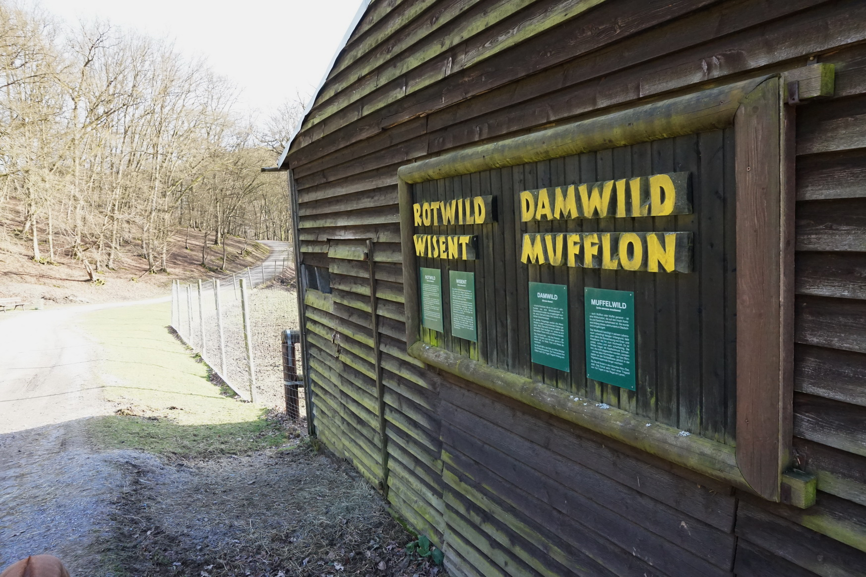 Wildpark Gackenbach Westerwald 27