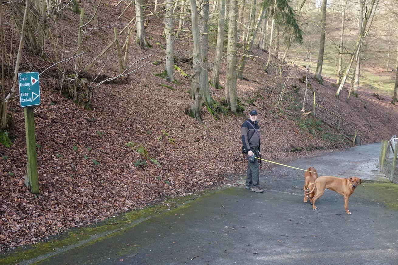 Wildpark Gackenbach Westerwald 3