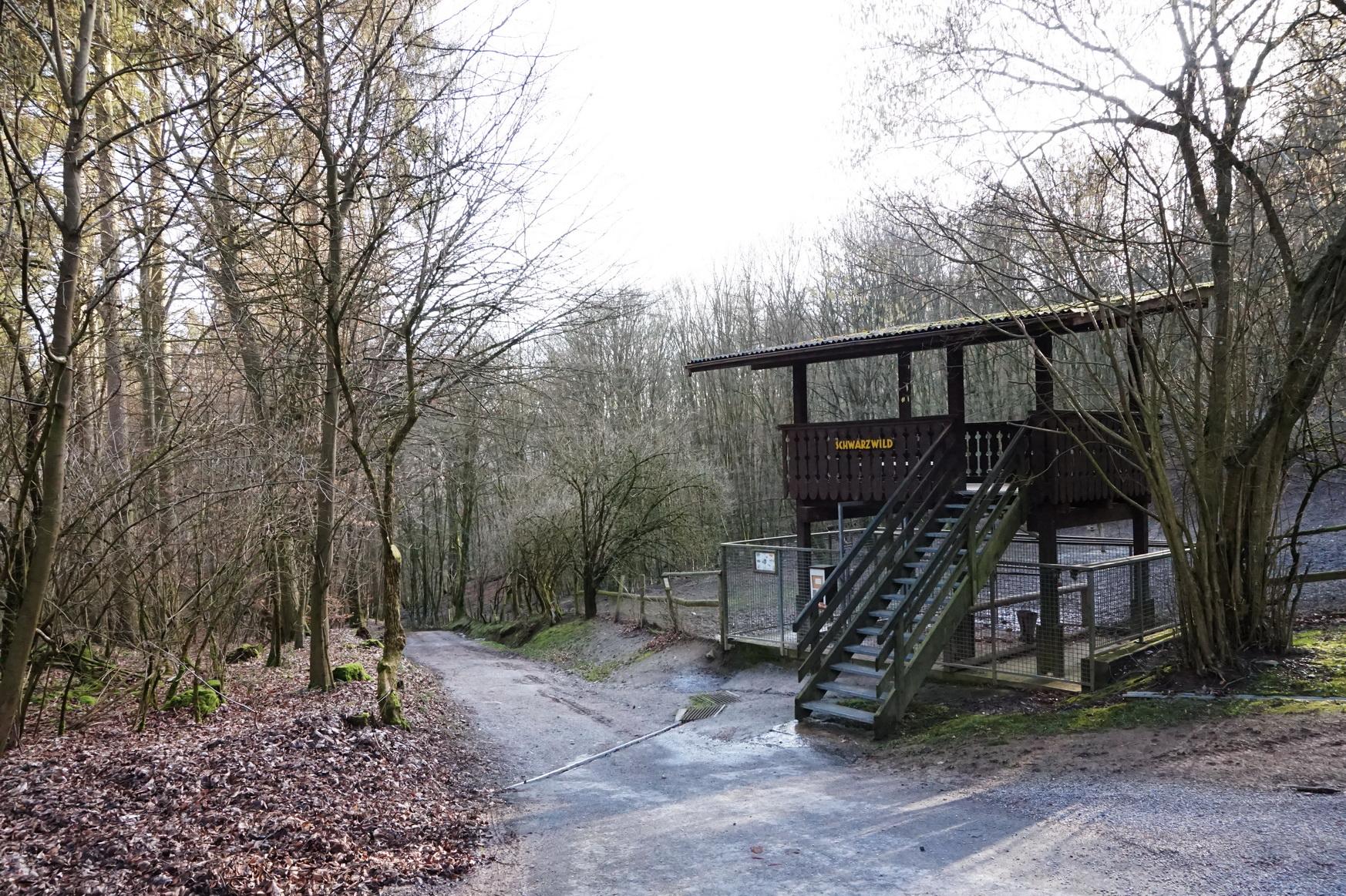 Wildpark Gackenbach Westerwald 38
