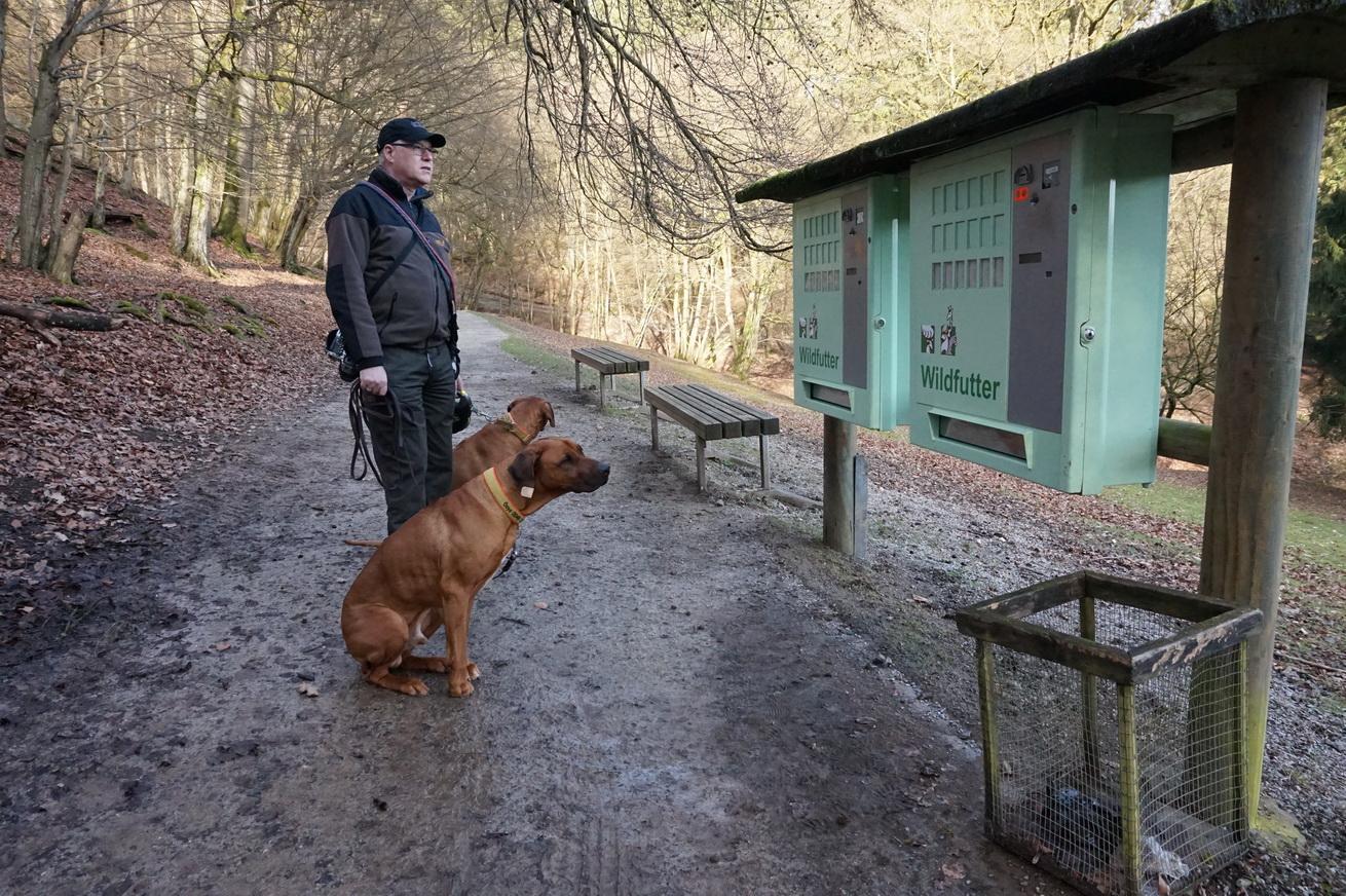Wildpark Gackenbach Westerwald 6