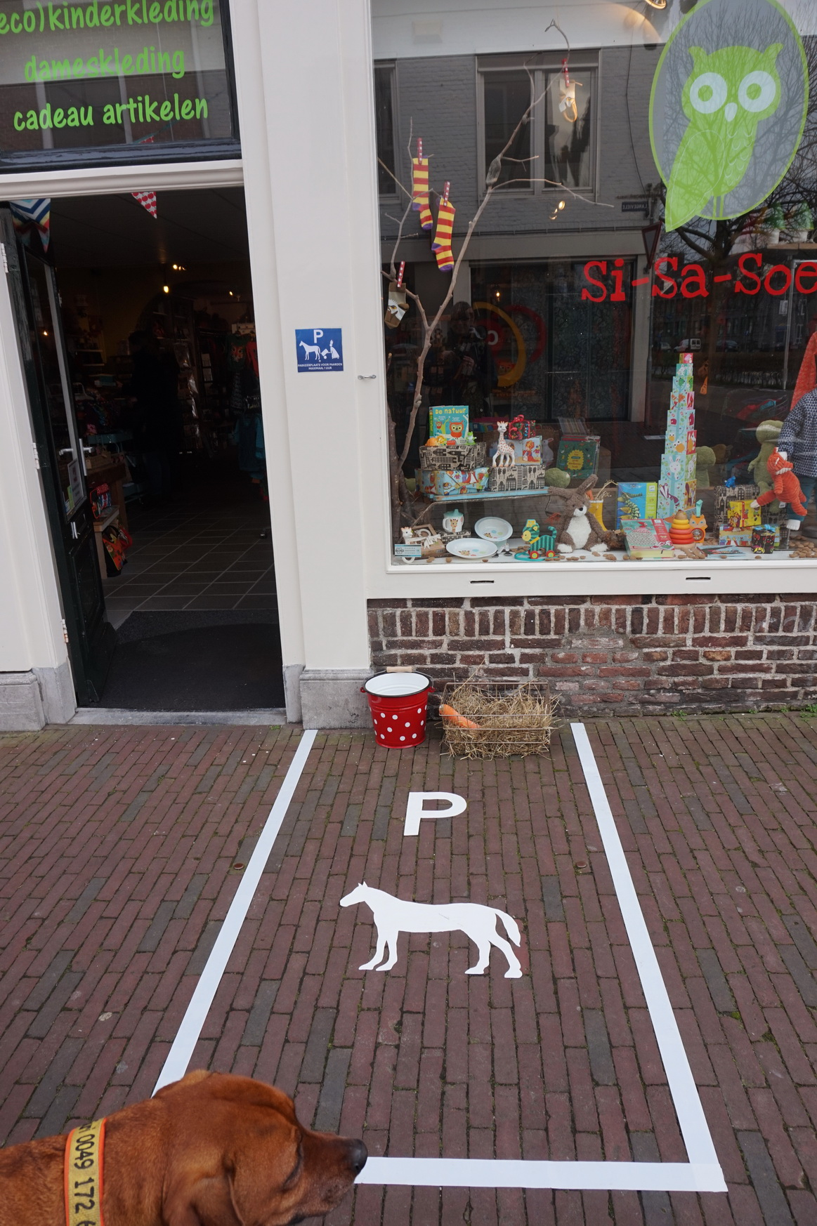 Huch. Was ist das? Ein Parkplatz für Pferde?