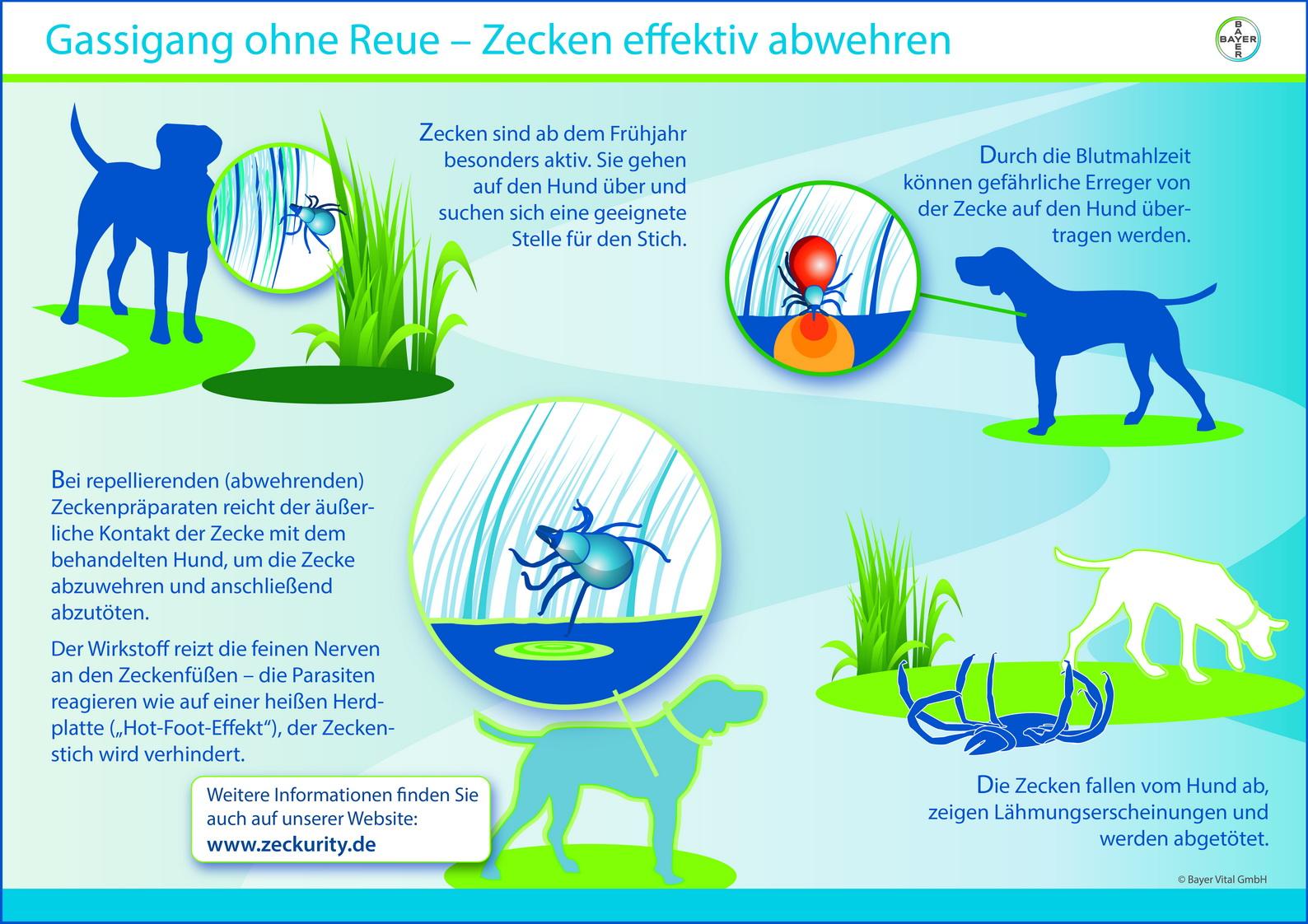 Infografik: Bayer Vital GmbH, Leverkusen