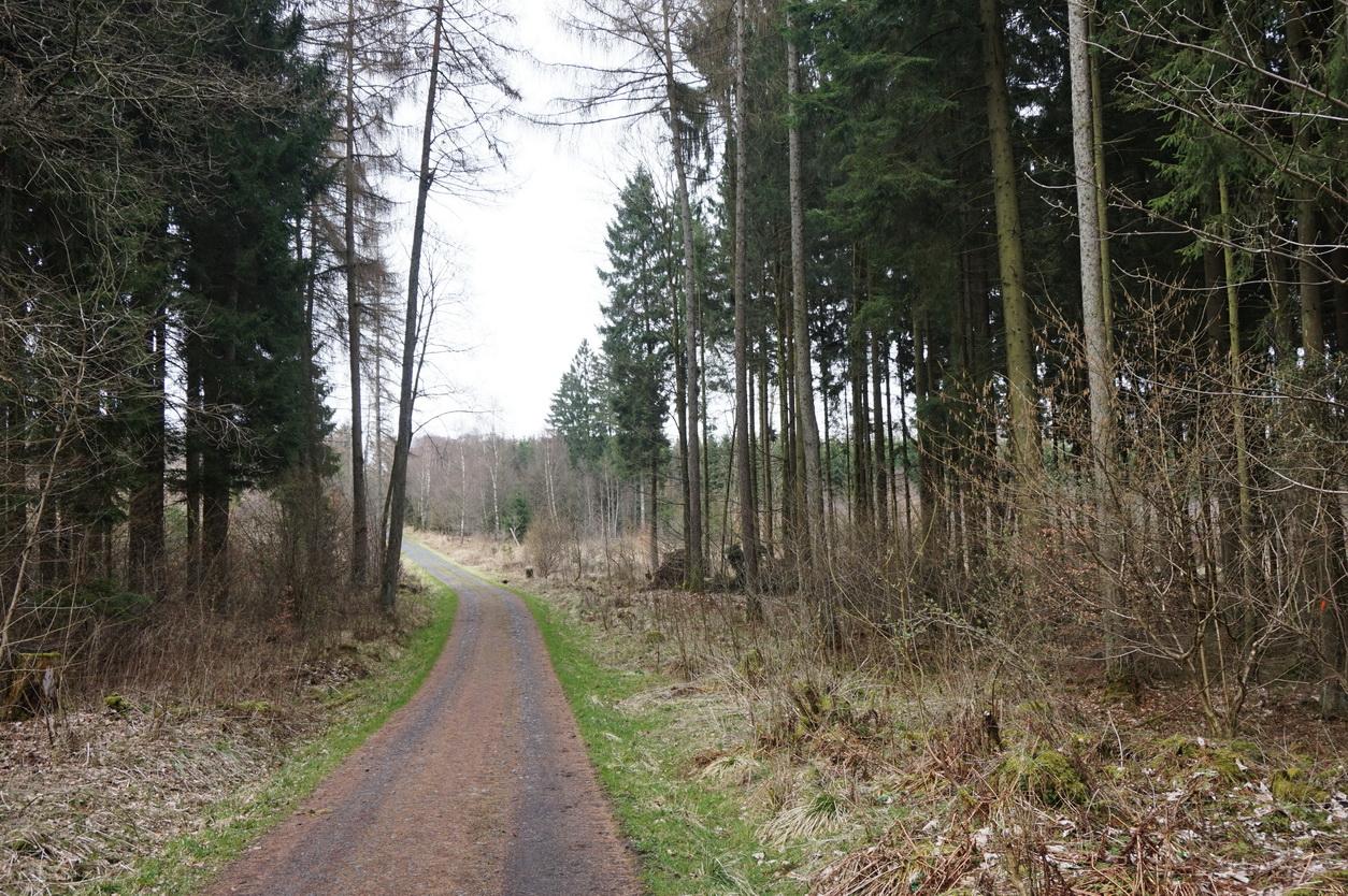 Blasiussteig Limburger Land 18