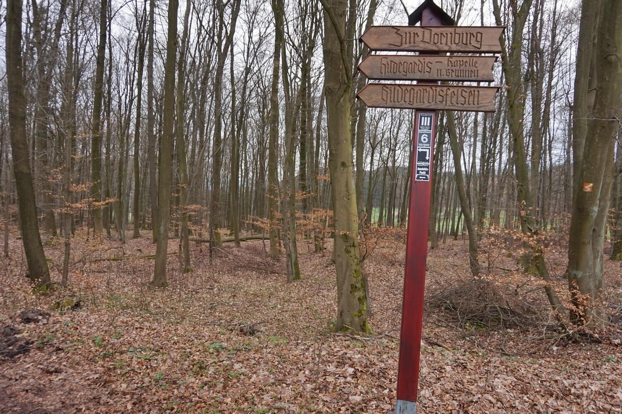 Blasiussteig Limburger Land 19