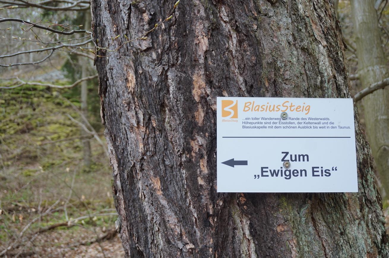 Blasiussteig Limburger Land 32