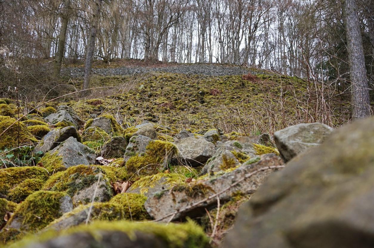 Blasiussteig Limburger Land 33