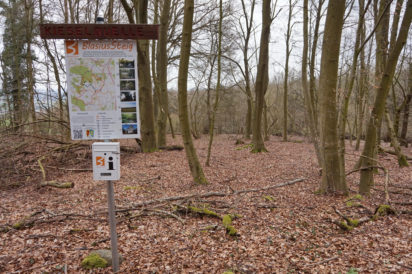 Blasiussteig Limburger Land 8