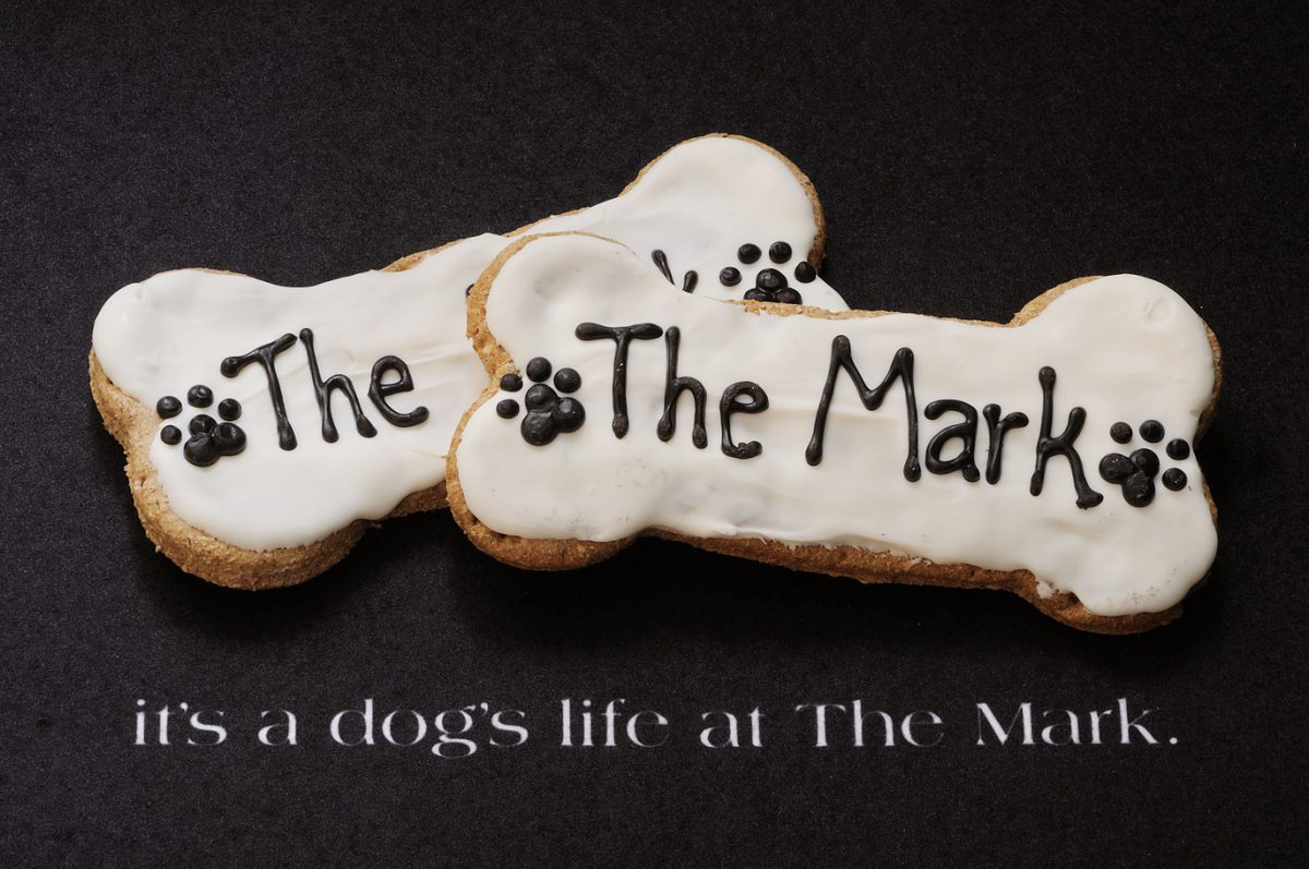 Luxuriöser Hotelaufenthalt in New York ist für Hunde kostenlos