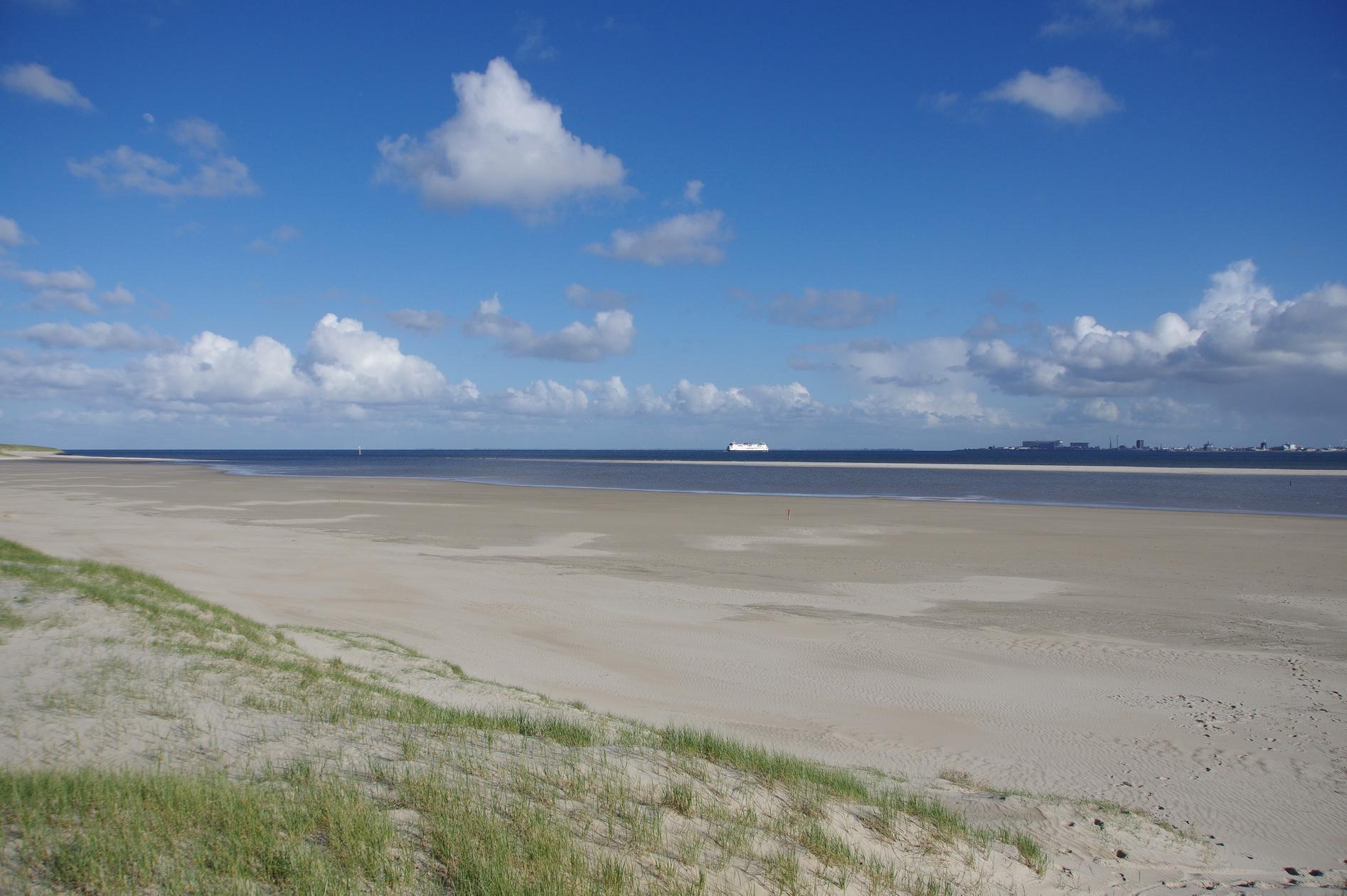 Texel - De Hors 1