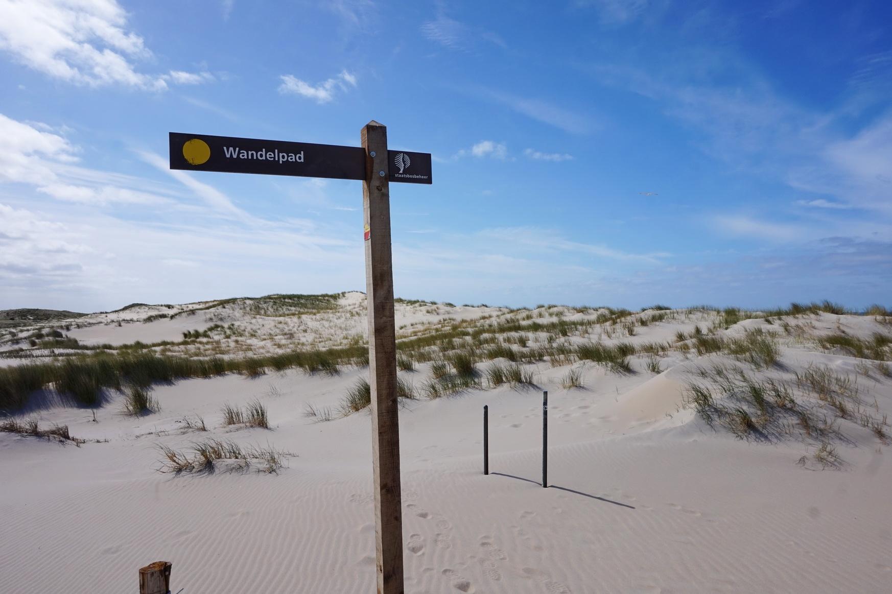 Texel - Wanderweg