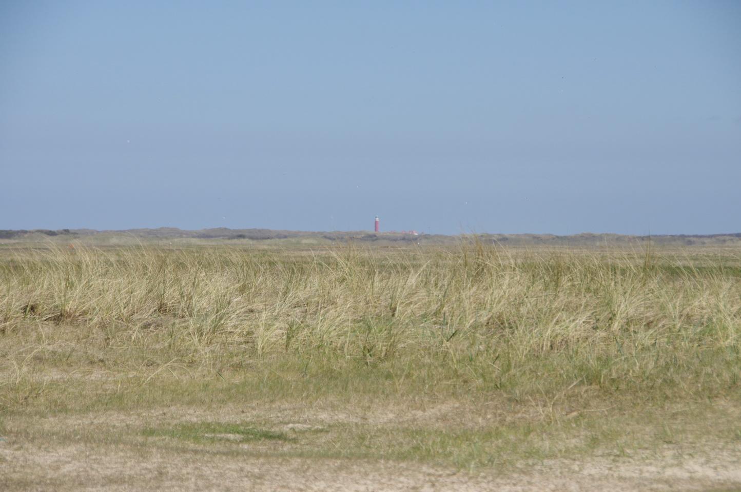 Texel - De Muy De Slufter TH 12