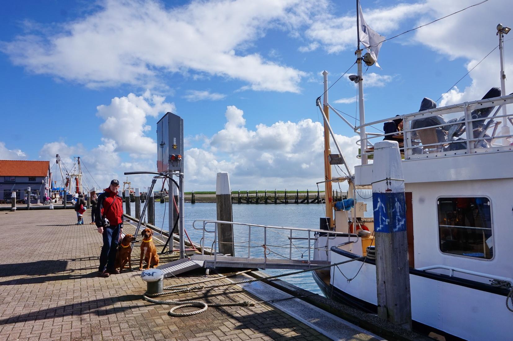 Texel - Schifffahrt Texel 44 1