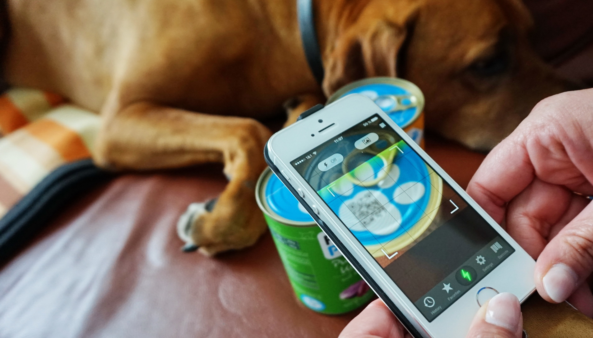 Foodprint Nassfutter Hunde 7
