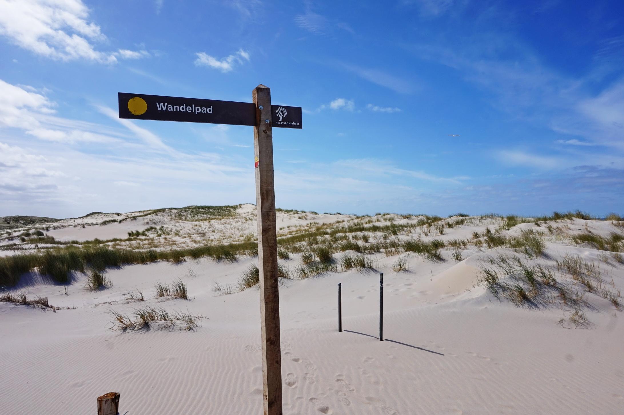 Texel - Strandspaziergang am Leuchtturm 12