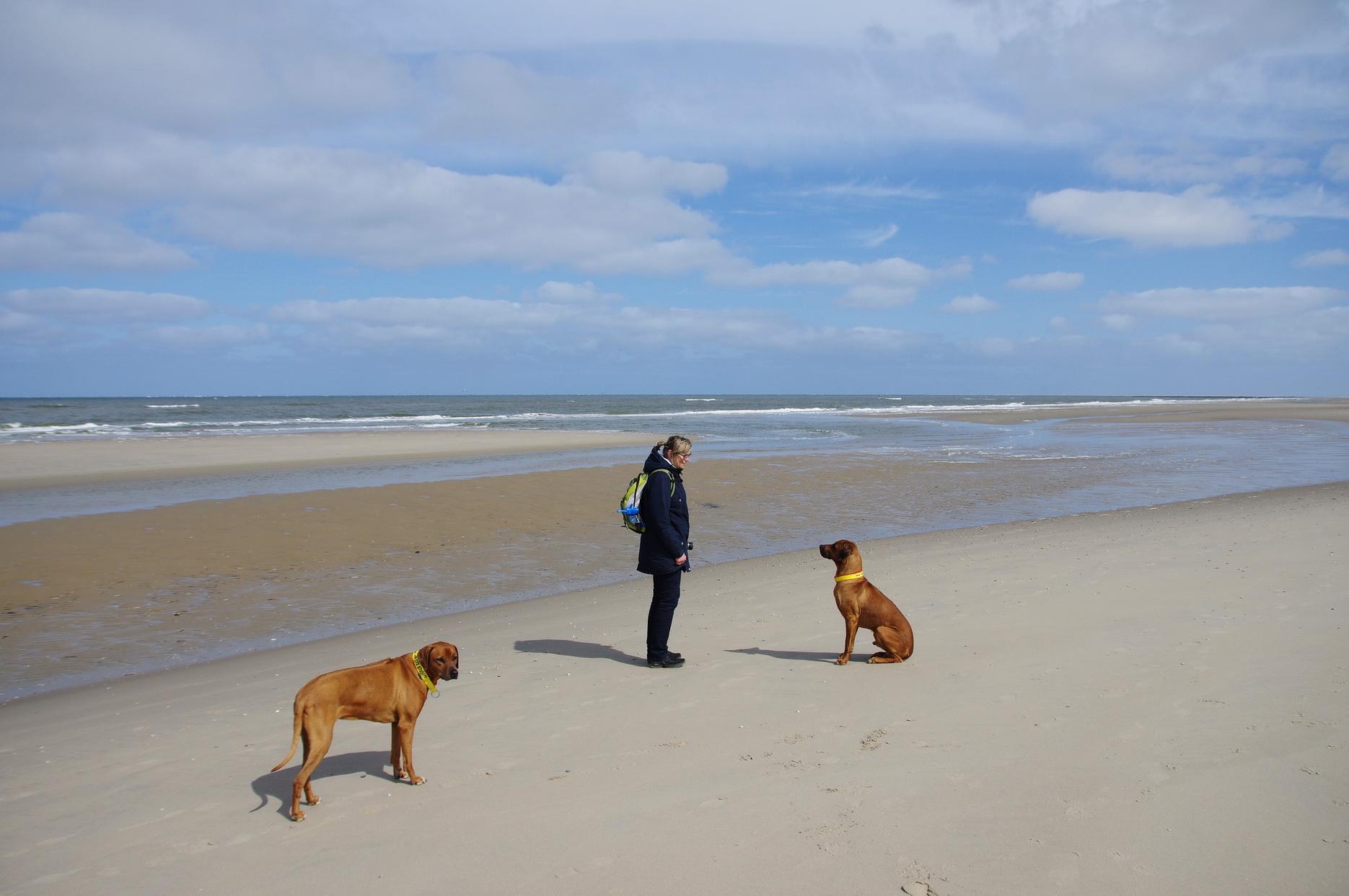 Texel - Strandspaziergang Leuchtturm TH 1