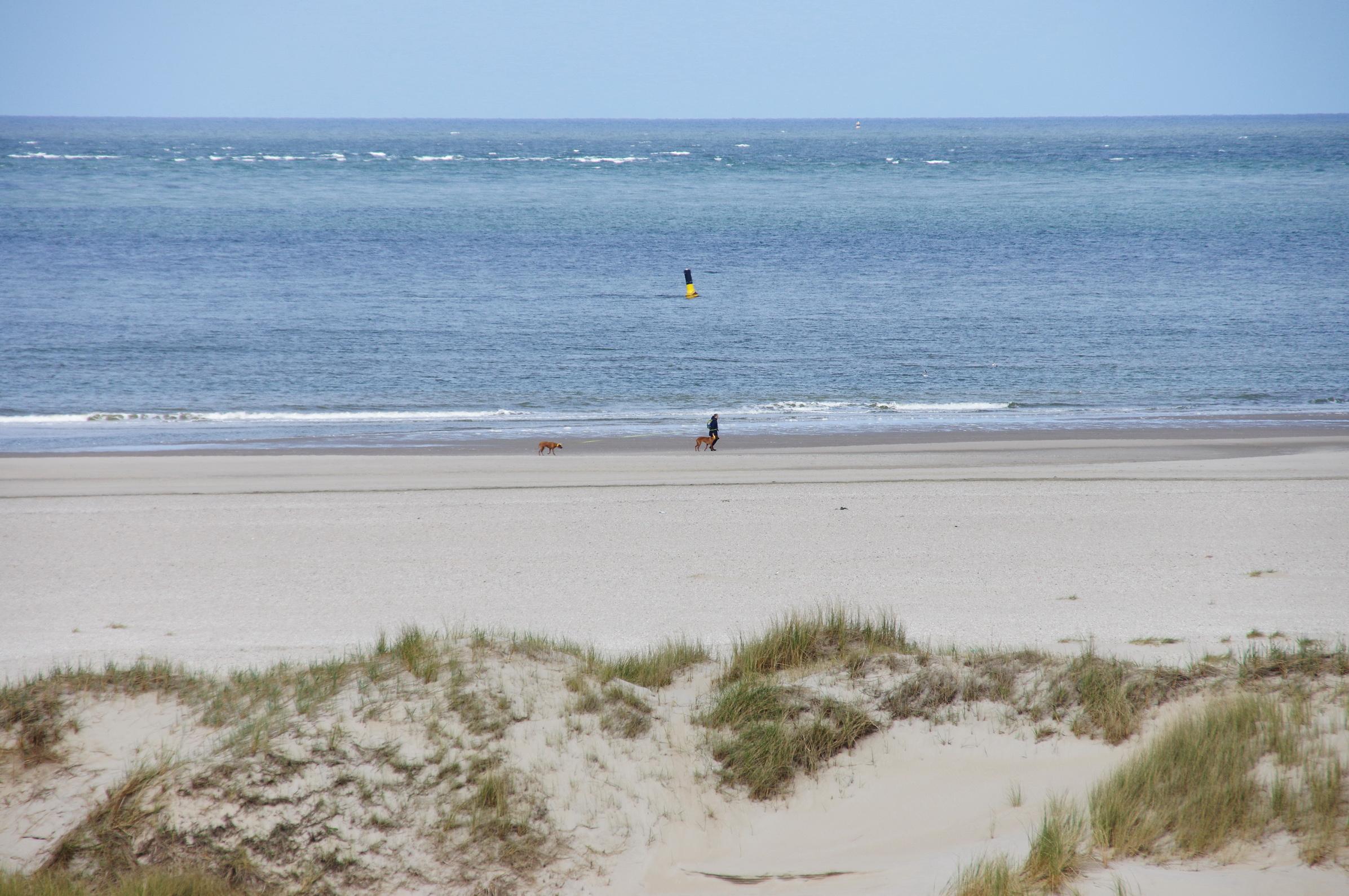Texel - Strandspaziergang Leuchtturm TH 5