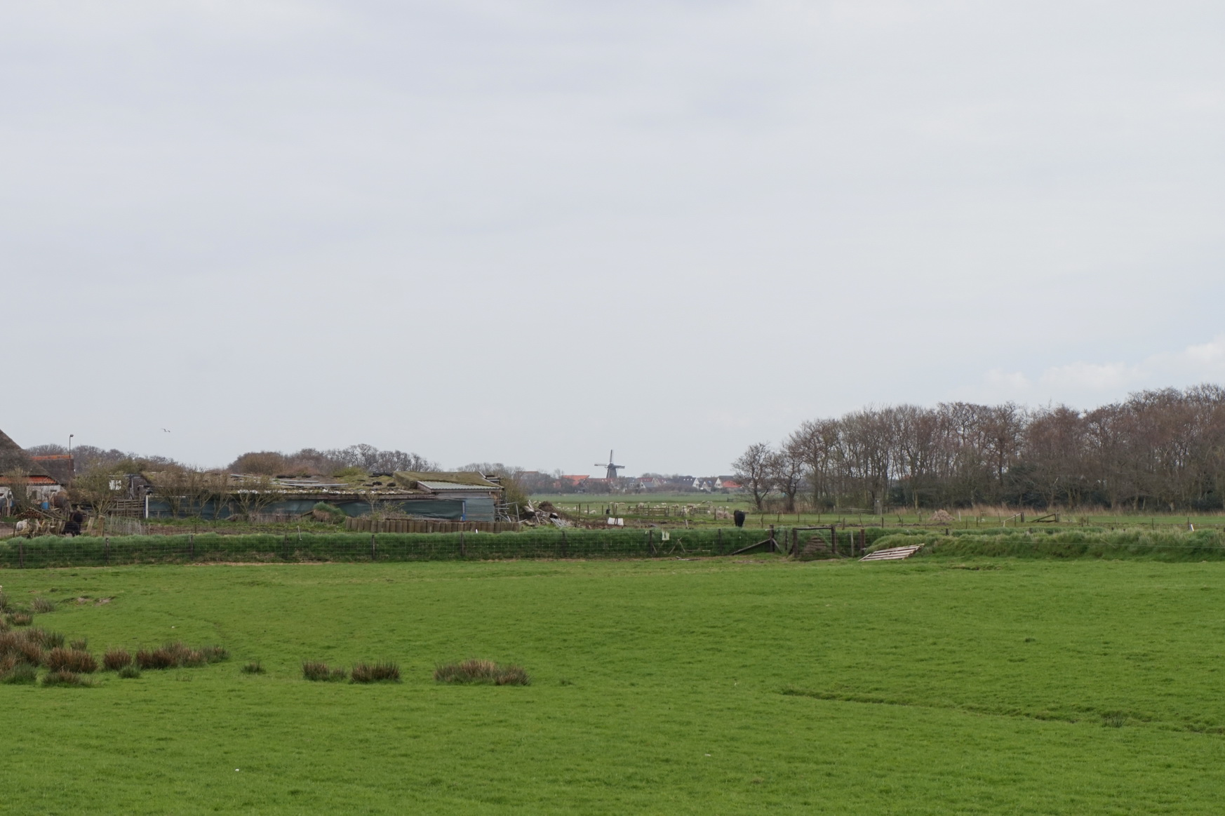 Texel - Wanderung Hoge Berg 10