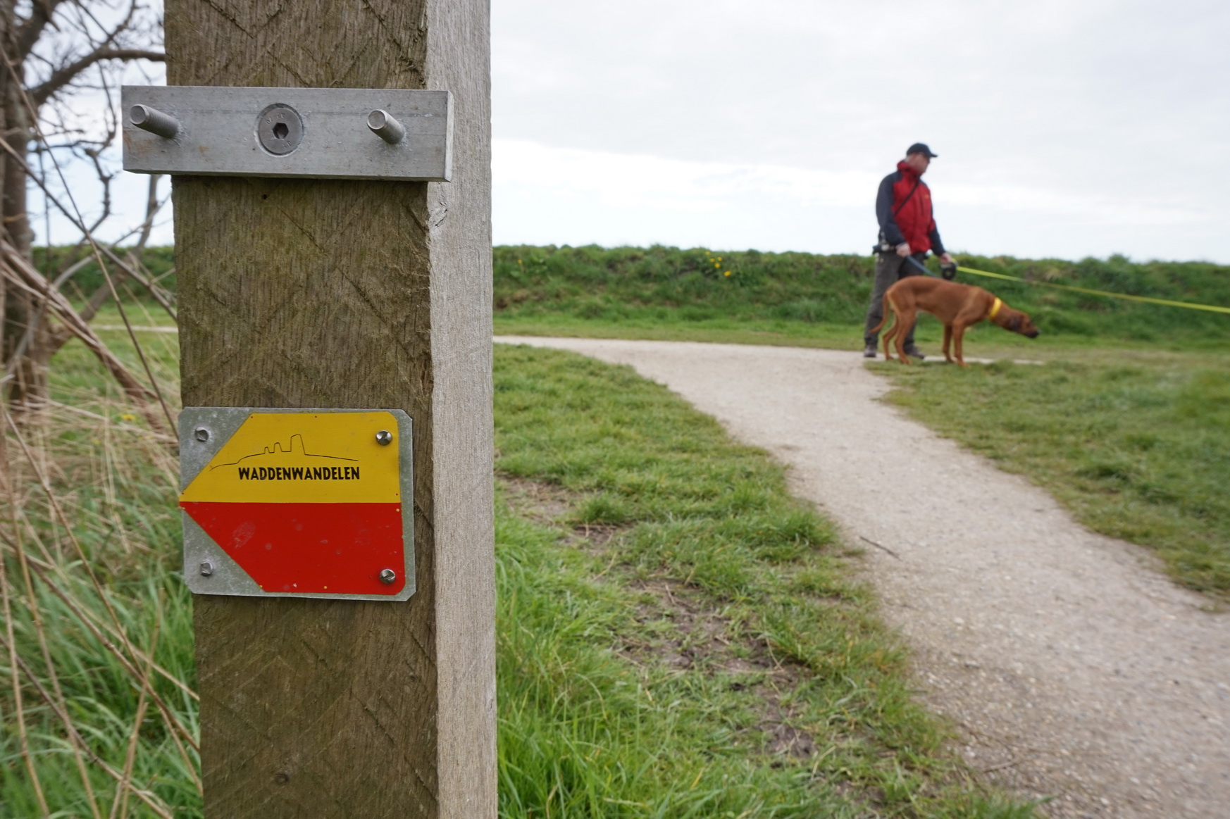 Texel - Wanderung Hoge Berg 2