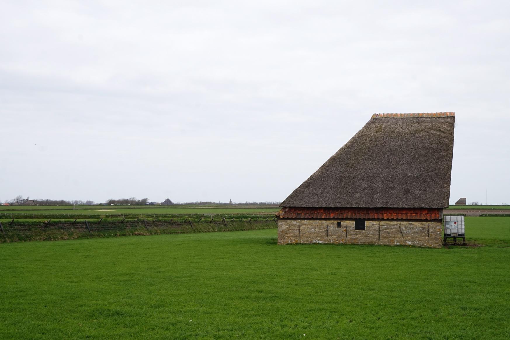 Texel - Wanderung Hoge Berg 8