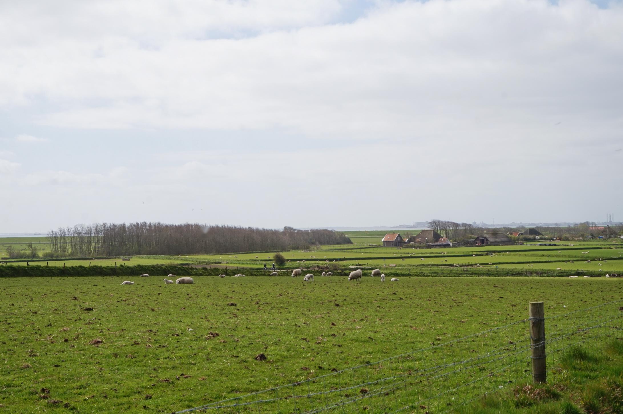 Texel - Wanderung VOC-Route 13