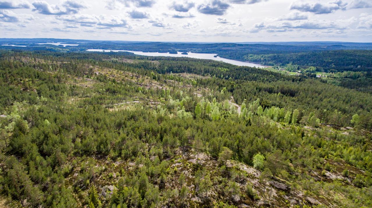 Blick auf den Ort Sillebotten und den See Östra Silen