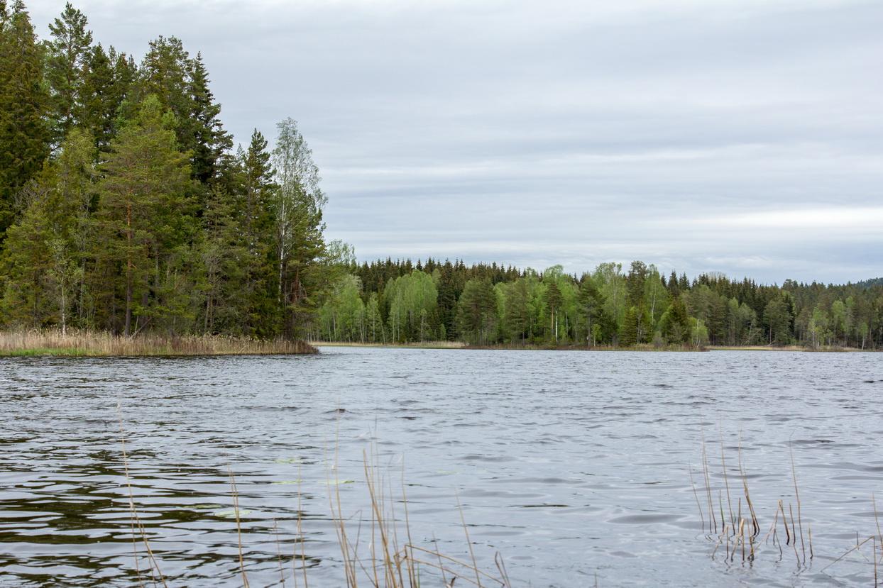 Einer von 10.000 Seen in Värmland
