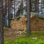 Holz für ein gemütliches Feuerchen gibt es auch ...
