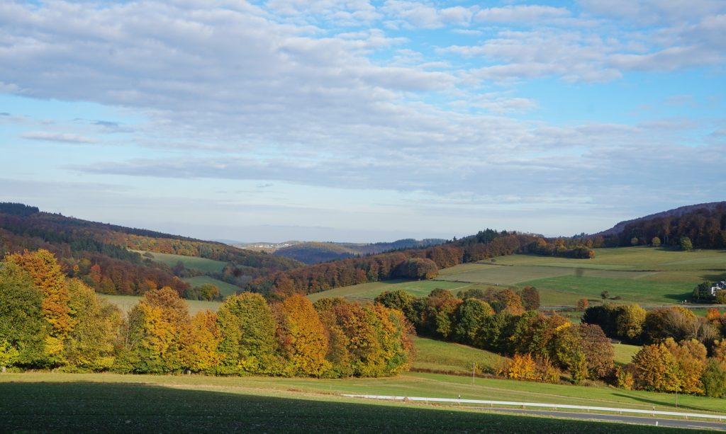 naturpark-hochtaunus-wanderweg-blauer-schmetterling-11