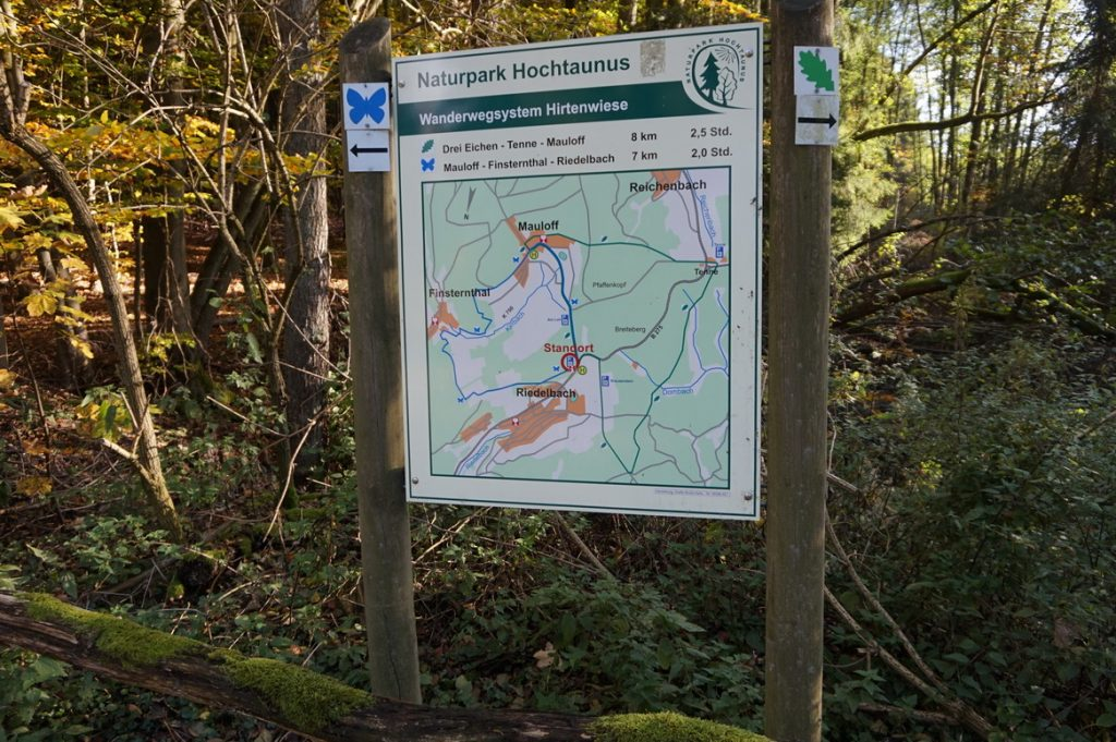 naturpark-hochtaunus-wanderweg-blauer-schmetterling-2