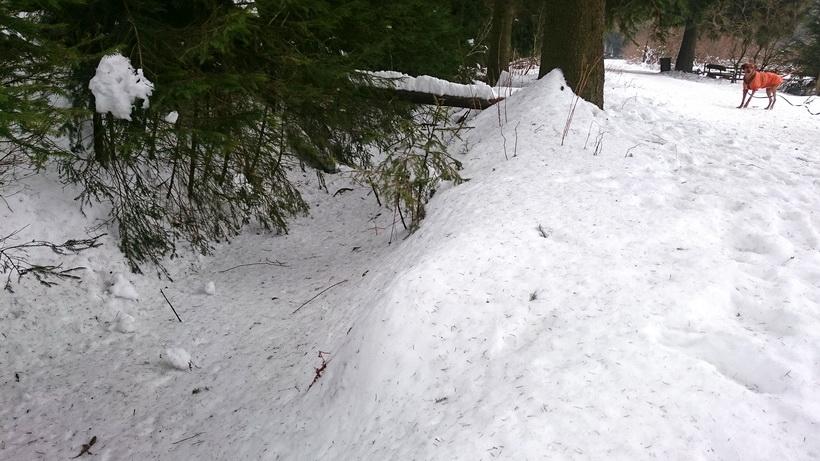 Unter der Schneedecke verläuft die Nidda