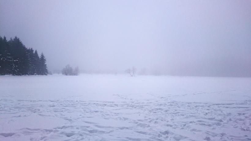 Das Hochmoor ist unter einer dicken Schneedecke versteckt.