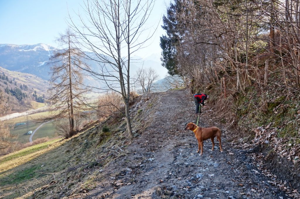 sagenweg-burg-klammstein-14