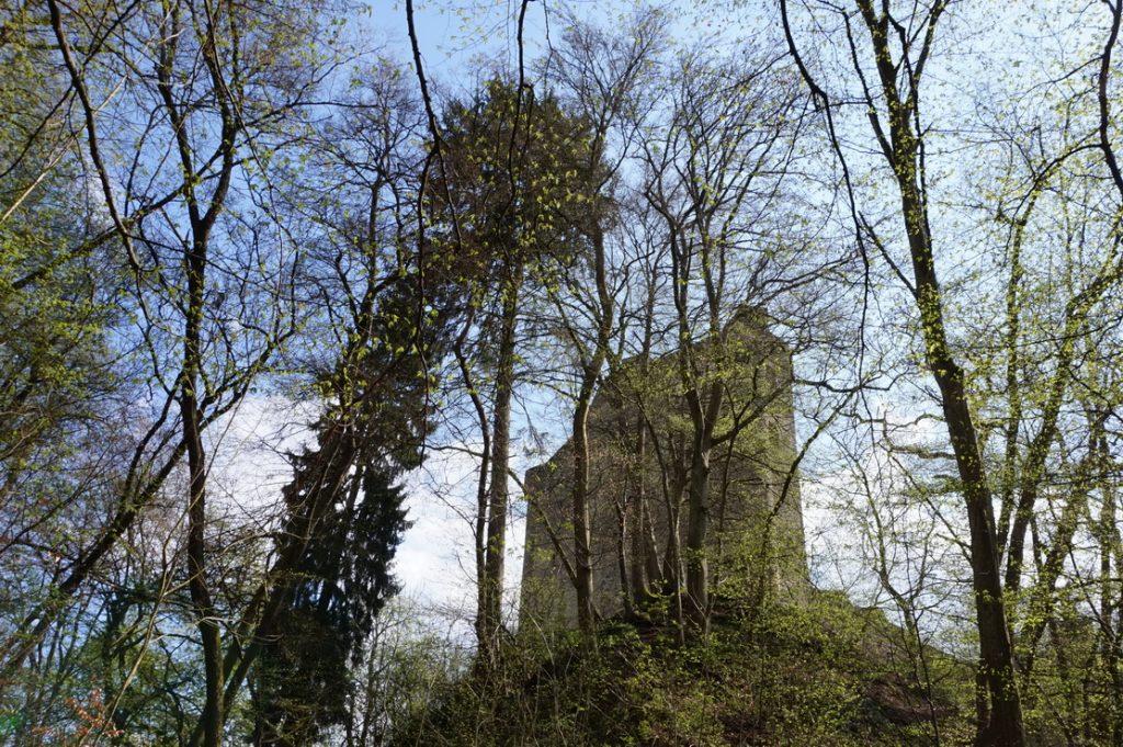Und dann taucht die Ruine der Sporkenburg endlich vor uns auf