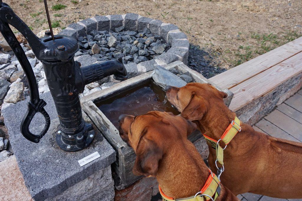 Dayo und Suri können sich am Brunnen erfrischen