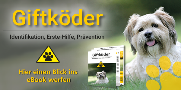 Giftköder - der Schrecken aller Hundebesitzer