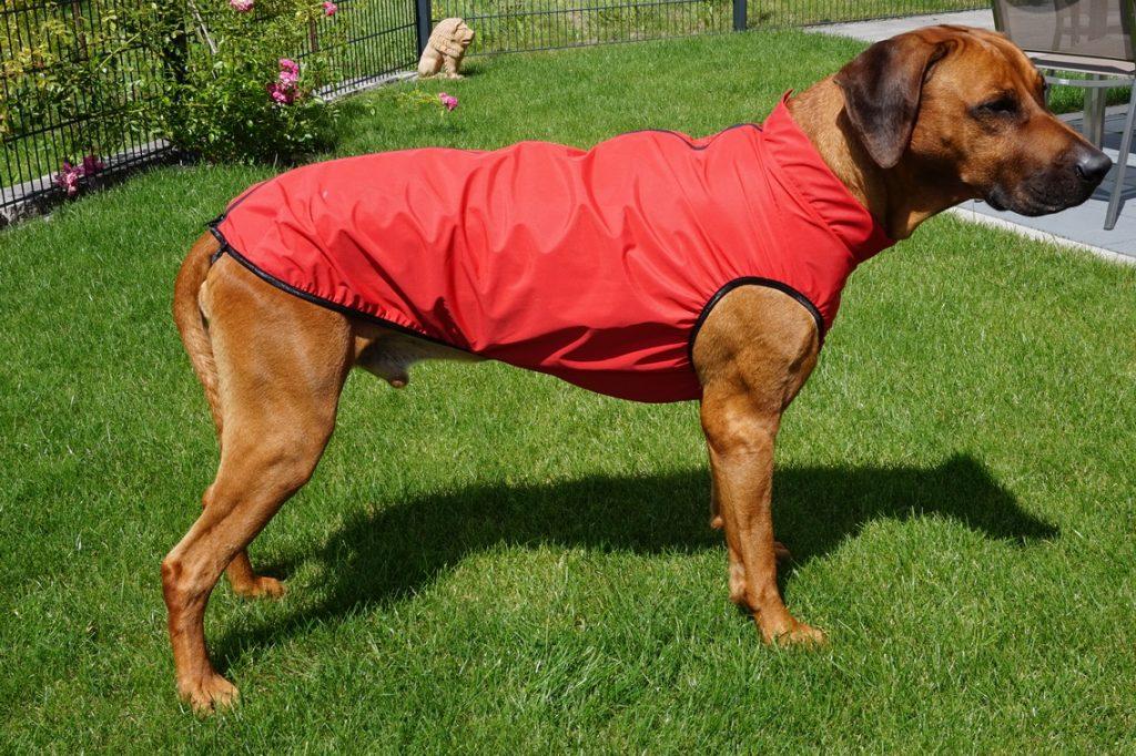 Der maßgeschneiderte, ultraleichte Regenmantel für Hunde in Rot