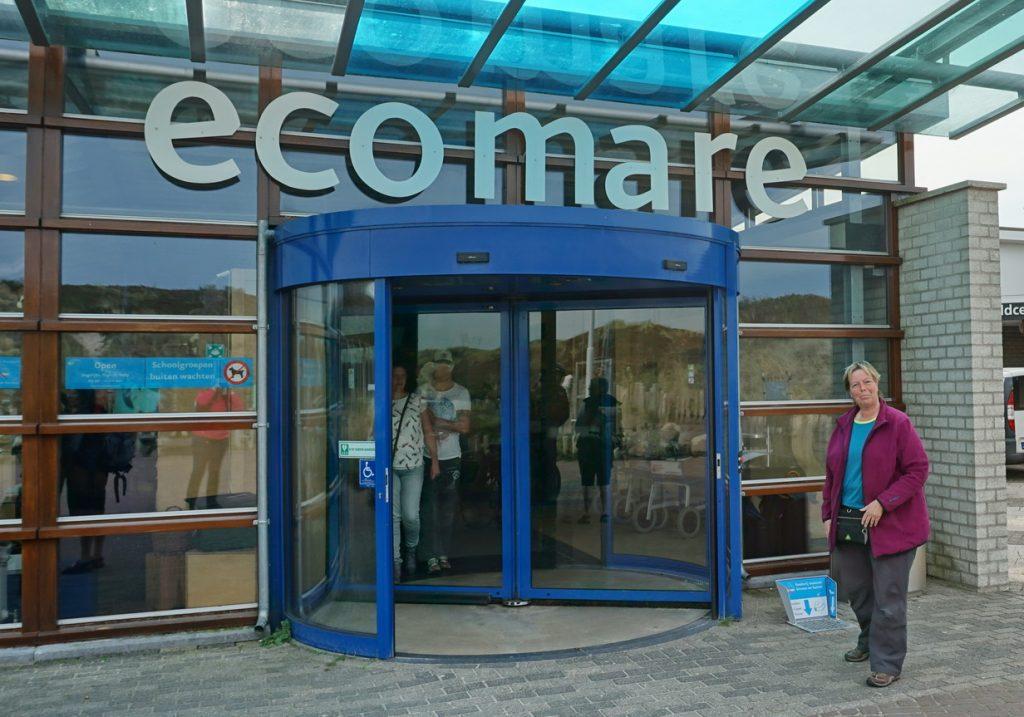 Ecomare oder Annie und ich - eine Adoption auf Texel