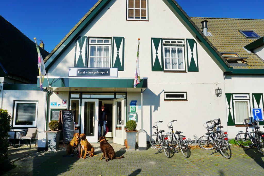 Texel Hotel  Sterne