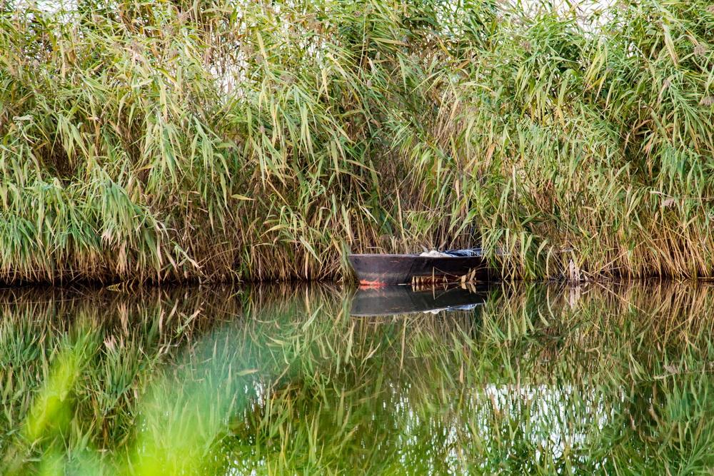 Die Pfeiffers im Spreewald - von historischen Mühlen und wunderschöner Natur
