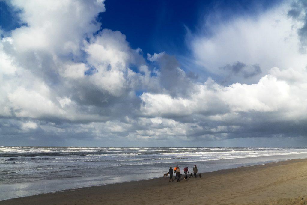 Noordwijk - viel Natur und noch mehr Strand