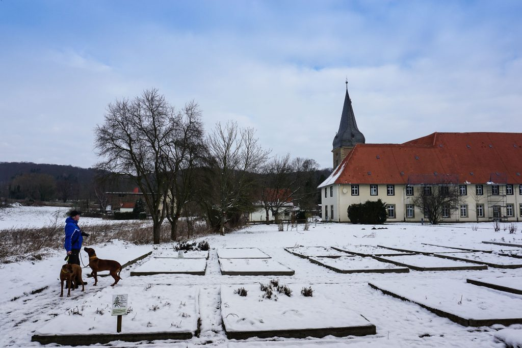 Der Kräutergarten ist unter dem Schnee verborgen