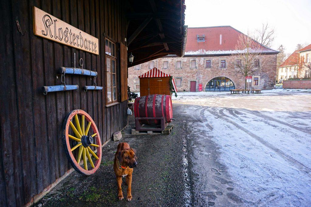 Im Klosterhof werden viele Feste gefeiert