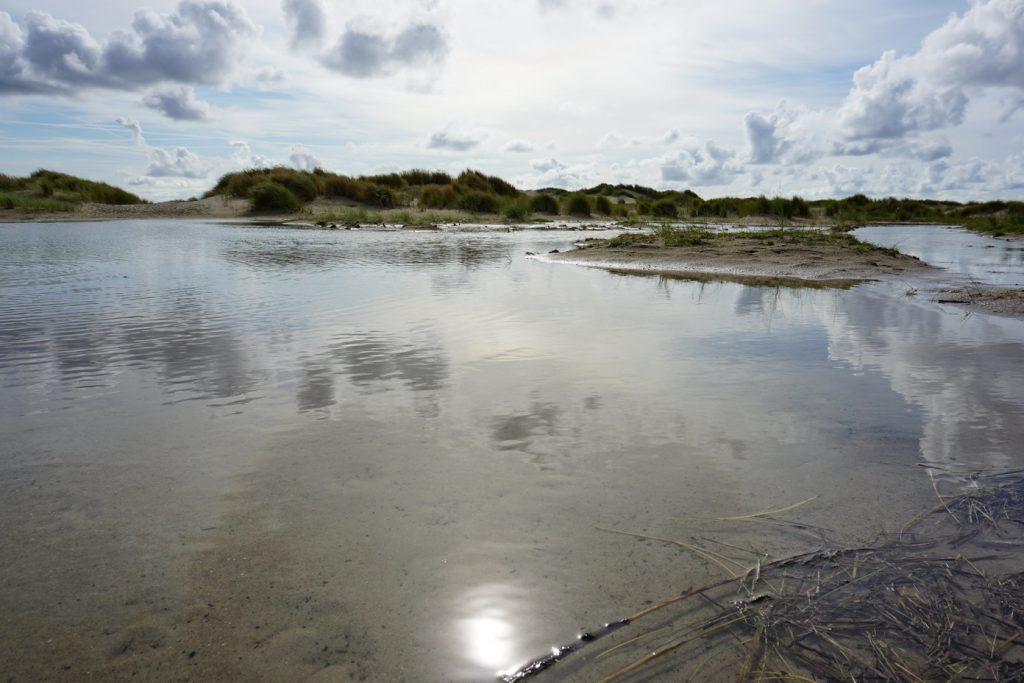 Lieblingsplätze auf Texel - De Hors