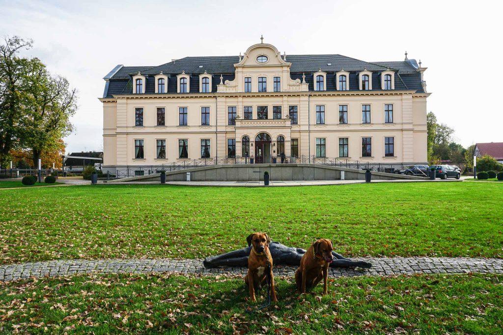 4 Tipps für ein Wochenende in Werder an der Havel
