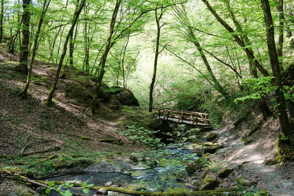 2 Tipps für ein #AbenteuerBrodenbach - runter in die Klamm, rauf auf die Burg!