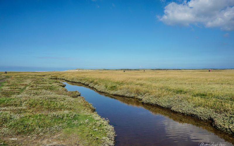 Wasserläufe und kleine Seen durchziehen diese Landschaft