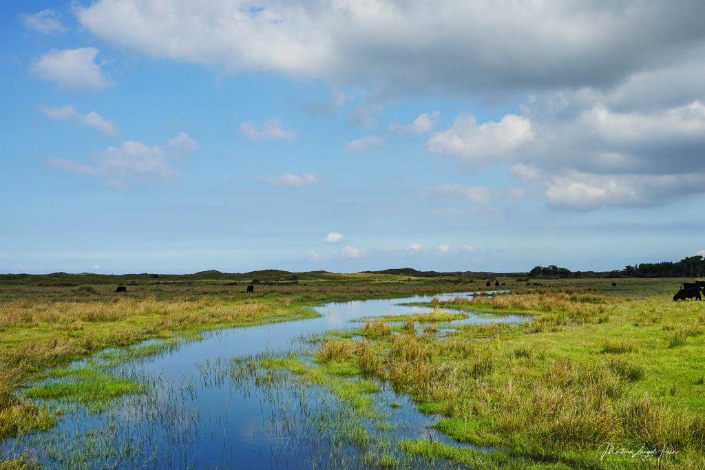Auch die Landschaft von De Muy änderst sich je nach Jahreszeit