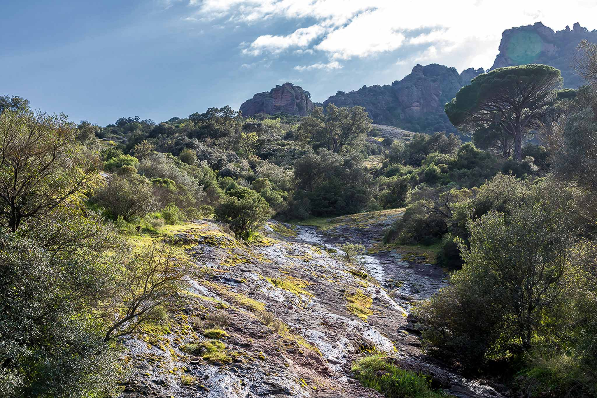 Die Pfeiffers am Rocher de Roquebrune an der Côte d'Azur
