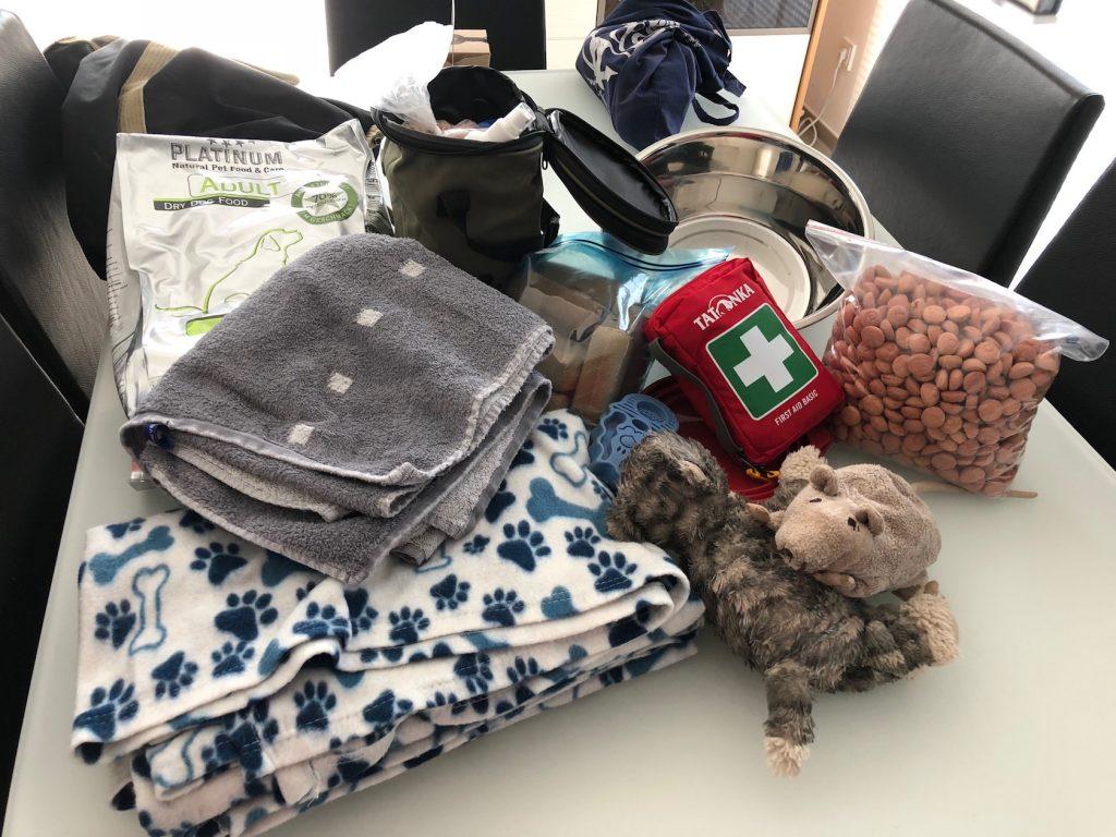 Reisegepäck für Hunde: Keine Packliste, aber 7  Tipps