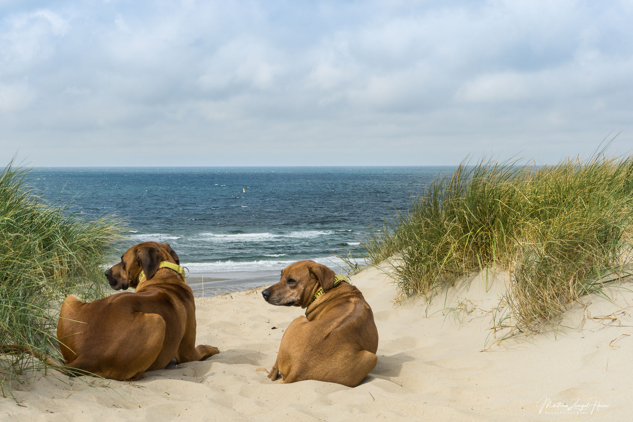 Praktische Tipps für einen entspannten Urlaub auf Texel